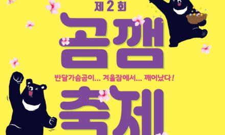 제2회 곰깸축제 홍보영상